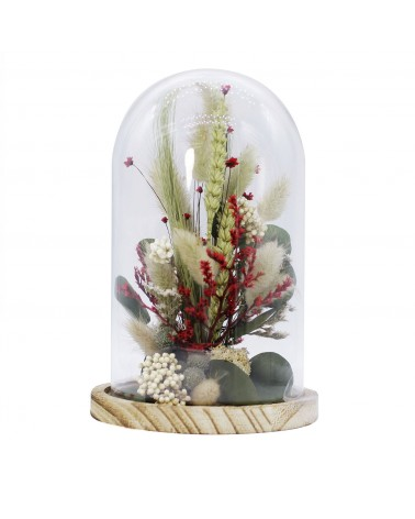 Naturalys - Glass Bell dried flowers Small Red