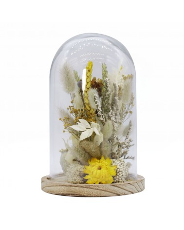 Naturalys - Glass Bell dried flowers Small White