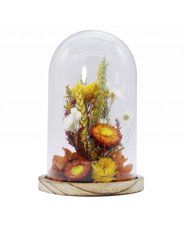 Naturalys - Glass Bell dried flowers Small Orange