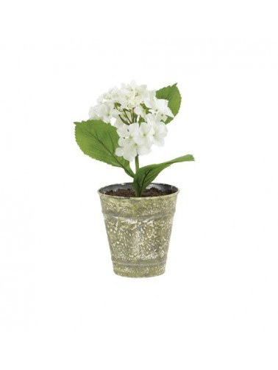 Pot Hortensia Blanc H28 cm Athezza